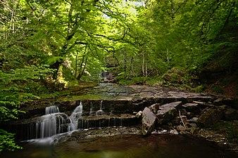 Cascadas en el río Argoza 01.jpg