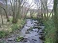 Cashel Burn. - geograph.org.uk - 126559.jpg