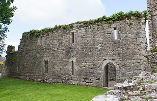 Castlelyons Friary former Carmelite Priory and National Monument located in County Cork, Ireland