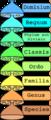 Categoriae taxonomicae la.png