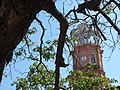 Cathedral Tower through Trees - Puerto Vallarta - Jalisco - Mexico (11347703775).jpg