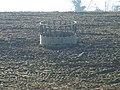 Cattle Feeder - geograph.org.uk - 692922.jpg