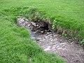 Cattle watering-hole, Borrans Field, Ambleside - geograph.org.uk - 170502.jpg