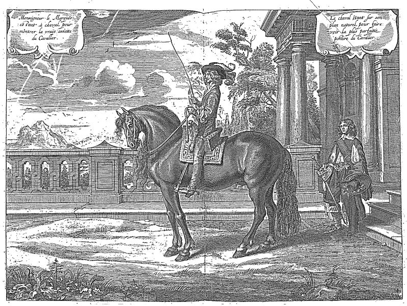 Filecavendish Lart De Dresser Les Chevaux 1737 Page062