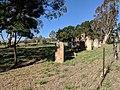 Cemetery, Tirrannaville, New South Wales.jpg