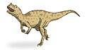 Ceratosaurus sketch1.jpg