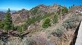 Cesta na Roque Nublo, Gran Canaria - panoramio.jpg