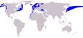 Cetacea range map Harbour Porpoise.PNG