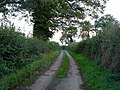 Chase View Lane - geograph.org.uk - 250774.jpg