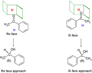 Chiral ligand - The chiral fence