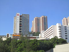 Cho Yiu Chuen from Route3.JPG