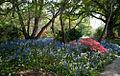 Christchurch gardens, New Zealand.jpg