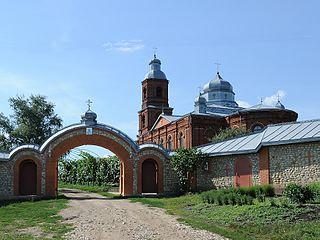 Skopinsky District District in Ryazan Oblast, Russia