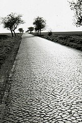 [Bild: 161px-Cobbled_road_in_the_GDR_on_ORWO_UP...614%29.jpg]