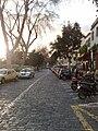 Cobbled street, Funchal, Madeira.jpg