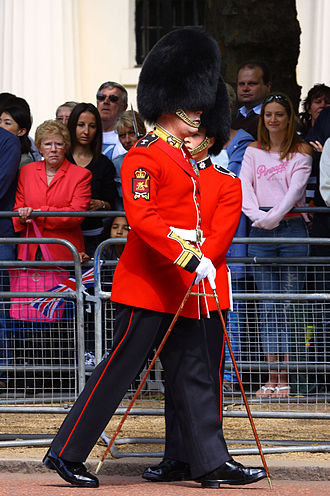 Colour guard - Colour Sergeant of the Welsh Guards. Note the distinctive shoulder insignia on the upper arm.