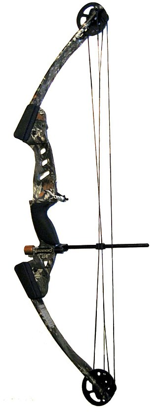 Compound bow - A compound bow