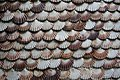Conchas. - panoramio.jpg