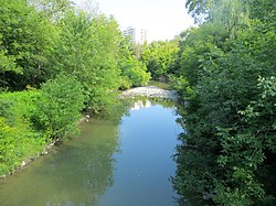 Cooksville Creek.jpg