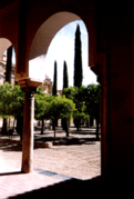 Cordoba-Mezquita.png