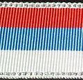 Corps Palatia Sash.jpg