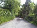 Country Road, Co Meath - geograph.org.uk - 1881537.jpg