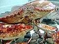 Crab - panoramio.jpg