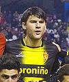 Cristian Sapunaru - 2012.jpg