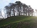 Crowning copse Mount Farm - geograph.org.uk - 2317763.jpg