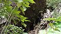 Cueva del guácharo.JPG