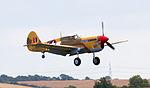 Curtiss P-40F Warhawk 41-19841 coming into land (5942276897).jpg