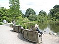 Curved seats at the pond, RHS Wisley - geograph.org.uk - 847063.jpg