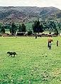 Cuzco (región) 1981 09.jpg