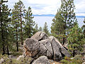 DSC02792, South Lake Tahoe, Nevada, USA (6019625789).jpg