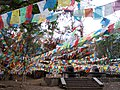 Da Bao Prayer Flags - panoramio.jpg