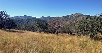 Davis Mountains - The Davis Mountains Preserve. Mount Livermore is left of center.