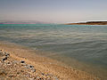 Dead sea (3308945406).jpg