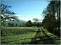 December Frost - Master Landscape Rhine Valley 2013 Bodenfrost - panoramio.jpg