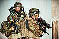 Defense.gov photo essay 120709-O-ZZ999-013.jpg