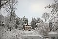 Dell Pond Cville snow 2010.jpg
