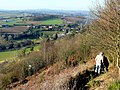 Descending Coppet Hill 1 - geograph.org.uk - 1187594.jpg