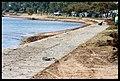Destruction of Woody Point-17-Large (2923271195).jpg