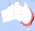 Diamond Beetle Distribution.png