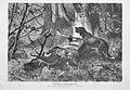 Die Gartenlaube (1875) b 785.jpg
