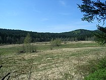 Die Stockauwiesen.jpg