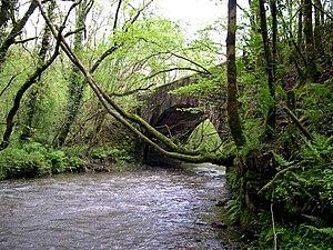 Carmarthen–Aberystwyth line - Disused railway bridge over the River Gwili on the former Carmarthen to Aberystwyth line