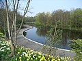 Dodder Valley Park Pond - geograph.org.uk - 402726.jpg