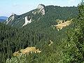 Dolina Miętusia a8.jpg