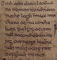 Domnall mac Muirchertaig (Annals of Inisfallen).jpg
