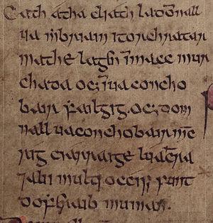 Domnall Gerrlámhach - Image: Domnall mac Muirchertaig (Annals of Inisfallen)